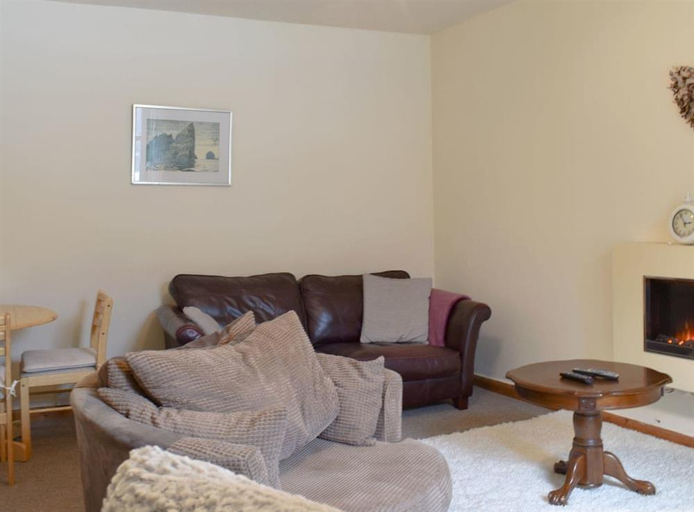 Comfy living/ dining room at By The River Tweed in Walkerburn, near Peebles, Peebleshire