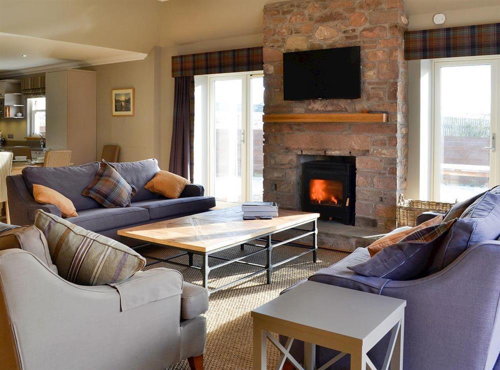 Beautiful and luxurious living area with wood burner at Canterland Lodge in Marykirk, near Montrose, Aberdeenshire, Scotland
