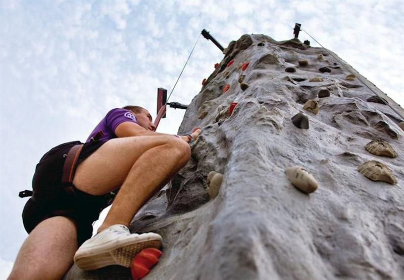 Climbing wall at Cheddar Woods in , Somerset
