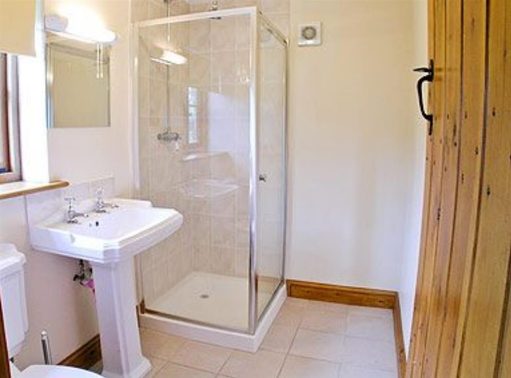 Shower room at Barn Owl Cottage,
