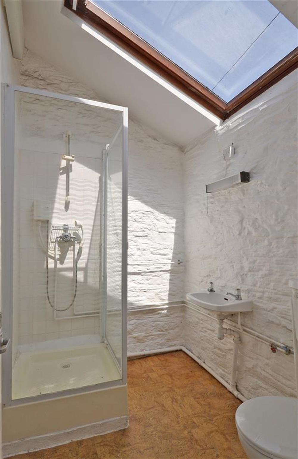 The ground floor shower room - just beside the back door - ideal for showering down sandy dogs or children!