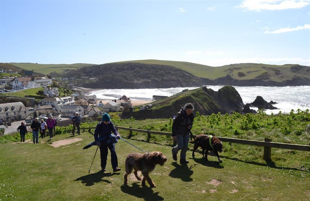 The house is dog friendly and there are many lovely coastal walks to chose from at Churchgate House, Blackawton