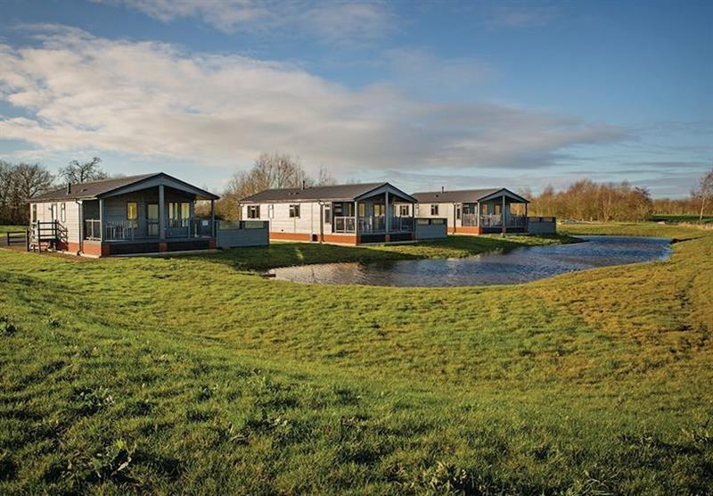 The park setting at Claywood Retreat Lodges in Darsham, Near Southwold