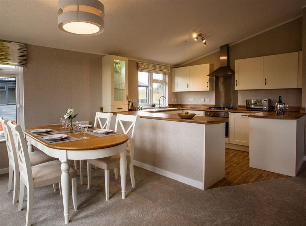 Open plan living space at Willow,