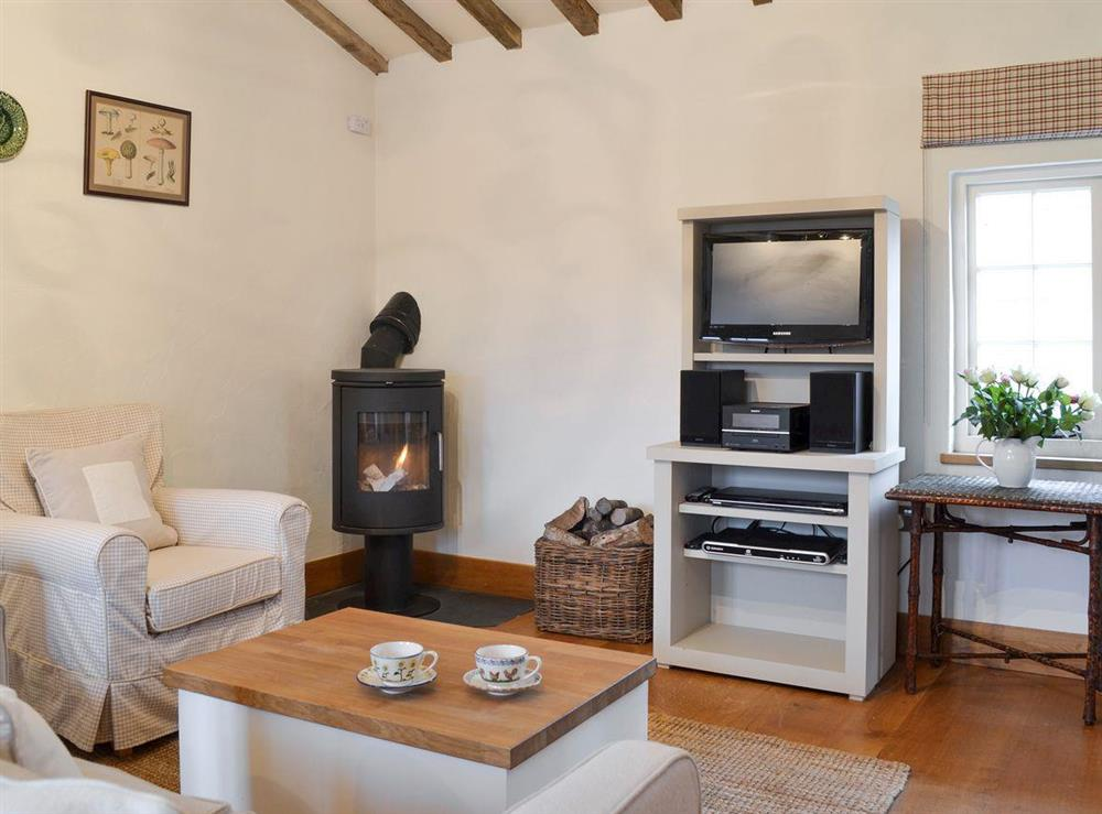 Cosy living area with wood-burner at The Cottage,