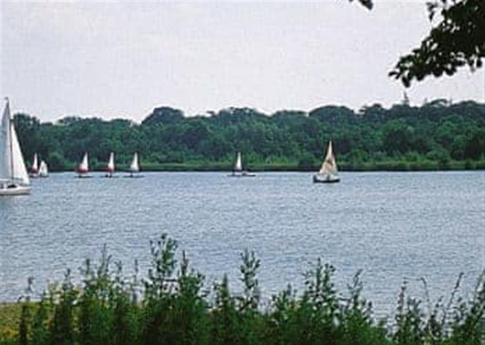 Lake at Coot in Wroxham, Norfolk., Great Britain