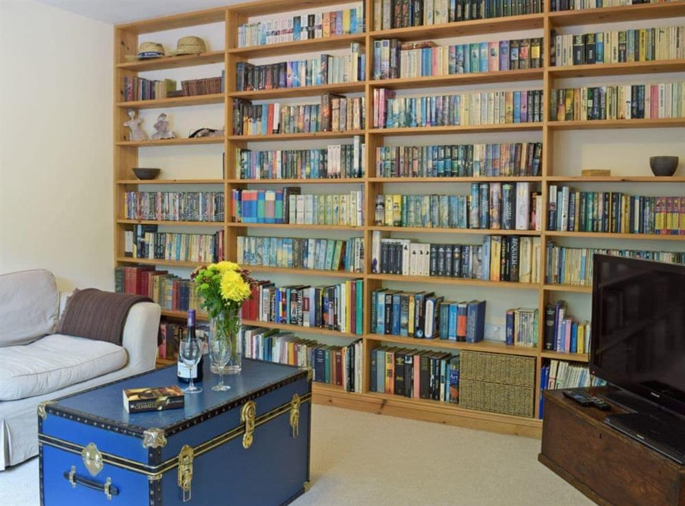 Excellent library room with a selection of DVDs and books at Cornant in Llechryd, near Cardigan, Dyfed