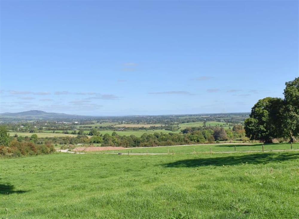 Views from Countryside Stillness
