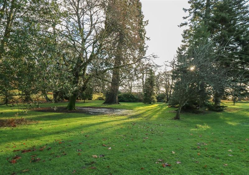 The garden at Courtyard Cottage, Drumoak near Peterculter