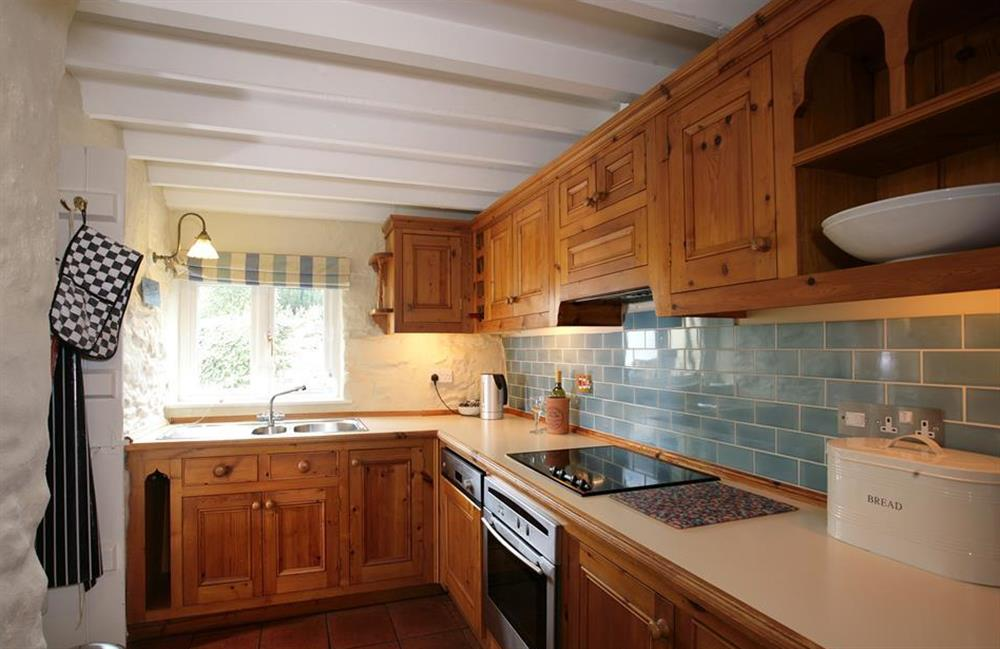 The well equipped kitchen at Crab Cottage, Stoke Gabriel