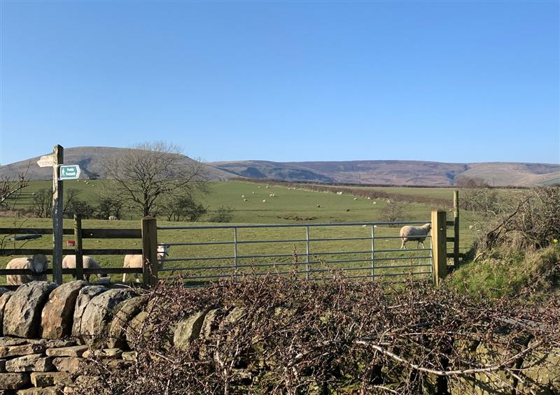 The area around Cuthbert Hill Farm