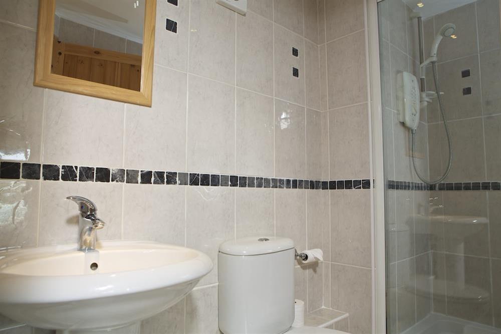 En suite shower room at Daisy in Blackawton, Dartmouth