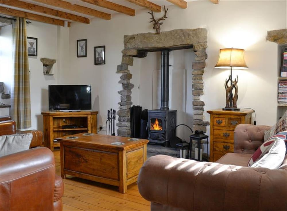 Cosy living room with wood burner at Daisy Cottage in Kelbrook, near Skipton, Lancashire