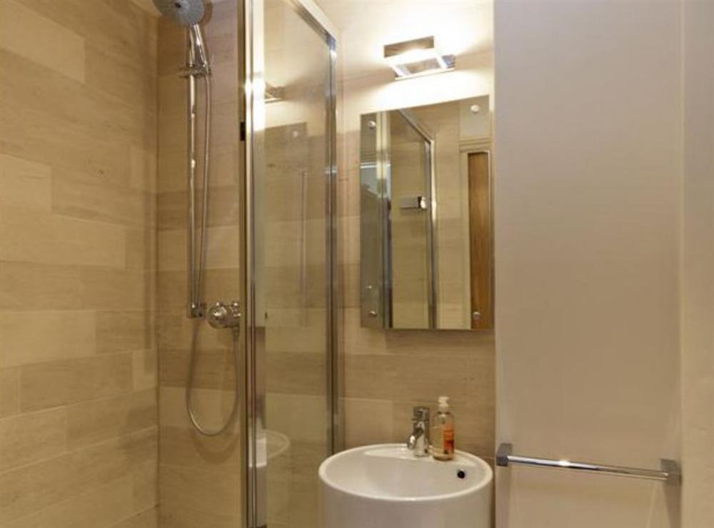 Shower room at Dart View, Apartment 1 in Dartmouth, Devon