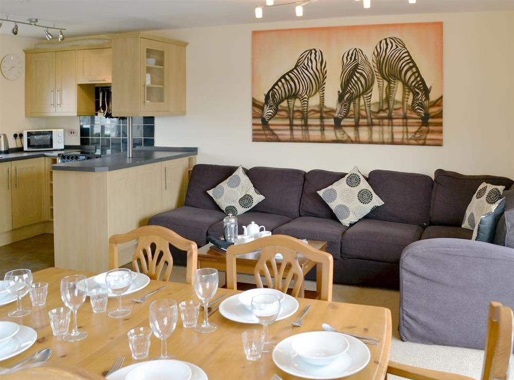 Well presented open plan living space at Davids Island in Wroxham, Norfolk