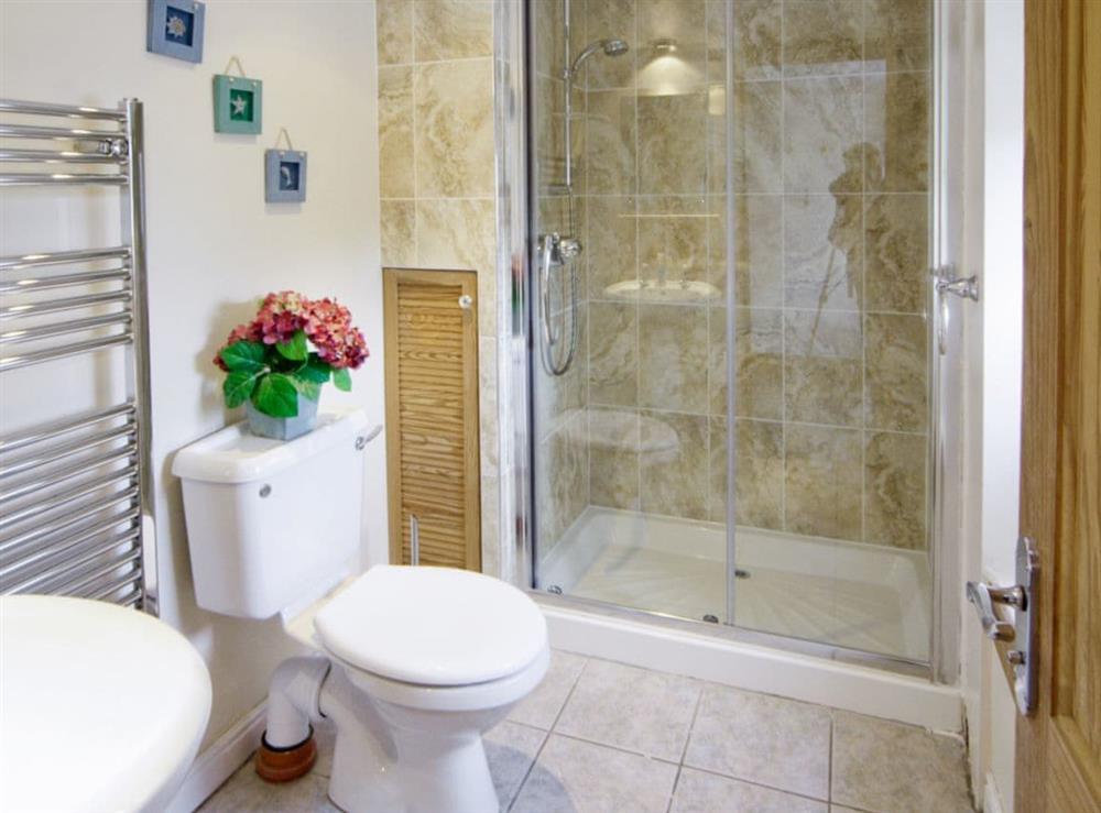 Bathroom at Deuglawdd Cottage in Aberdaron, near Pwllheli, Gwynedd