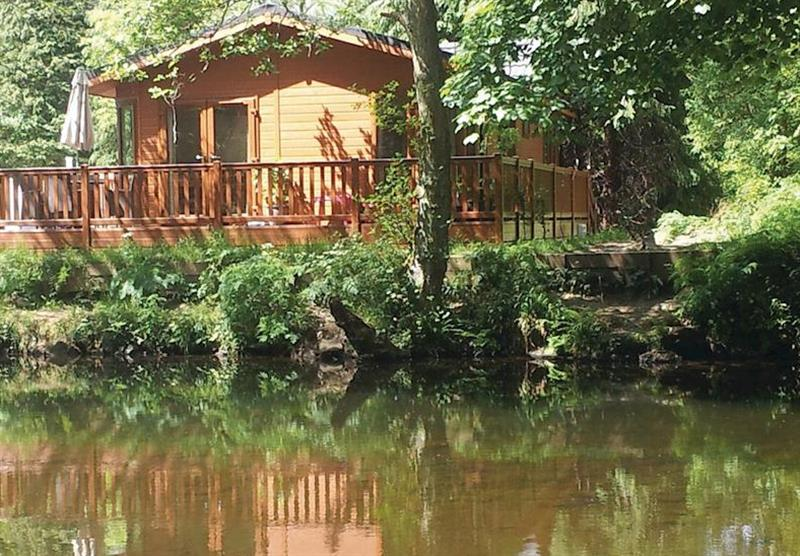 The park setting at Dollar Riverside Lodges in Dollar, Stirling, Perthshire & Southern Highlands