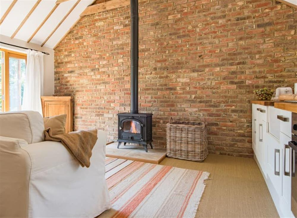 Open plan living space at Dormestone Paddock Cottage in Charing, England