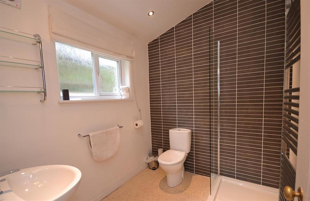 The modern shower room at Dower House, Dittisham