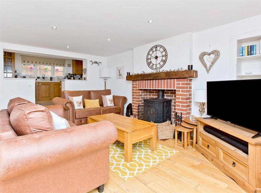 Living room at Dowies Mill Lane in Edinburgh, Midlothian