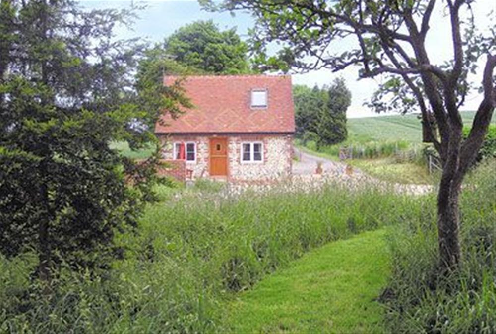 Outside at Drovers Cottage in East Meon, Hampshire., Great Britain