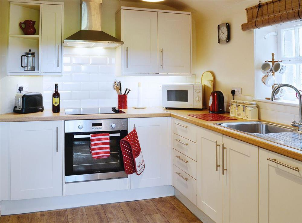 Well-equipped kitchen at Dunlappie Lodge in Edzell, near Brechin, Angus