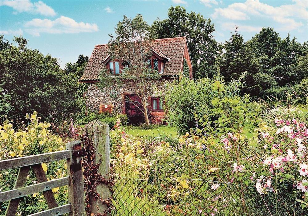 Eden Cottage at Eden Cottage in Norwich, Norfolk