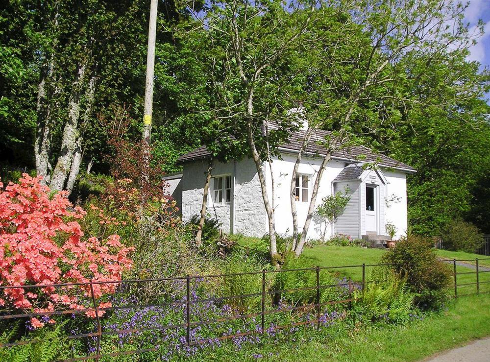 Idyllic holiday home at South Lodge,