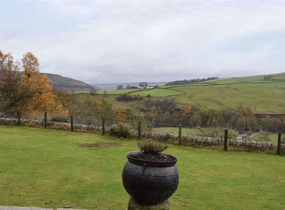 Views from Edge Farm