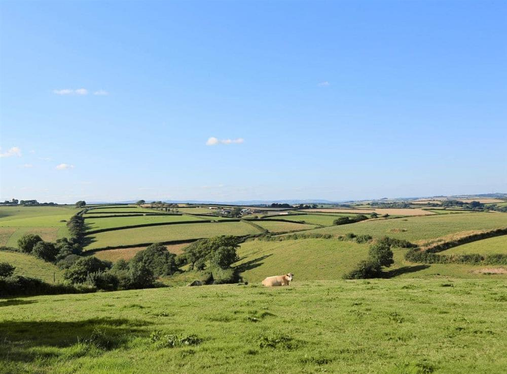 Surrounding area at Edgecombe Barn in Bow Creek, Nr Totnes, South Devon., Great Britain