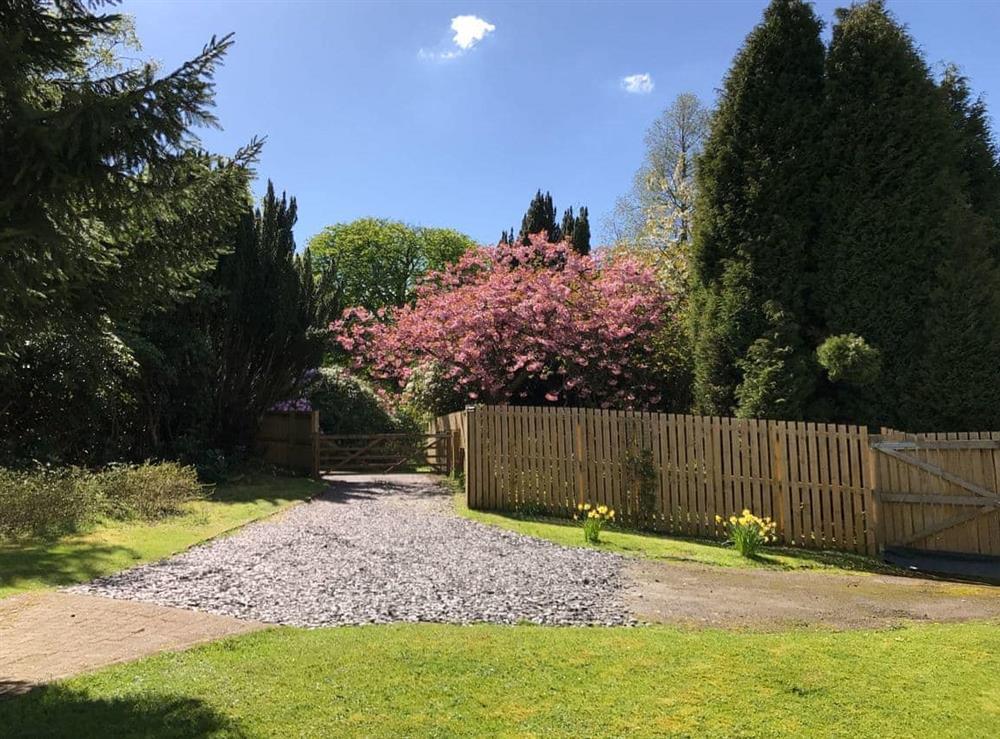 Large lawned garden at Elm Cottage in Falkirk, Stirlingshire