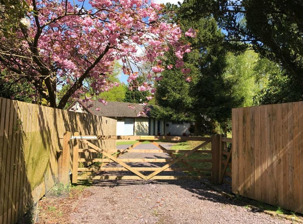 Welcoming detached holiday home at Elm Cottage in Falkirk, Stirlingshire