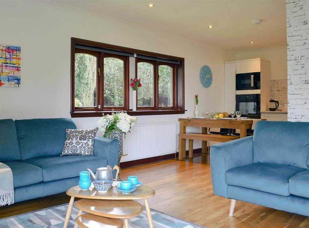 Well presented open plan living/dining room/kitchen at Elm Cottage in Falkirk, Stirlingshire