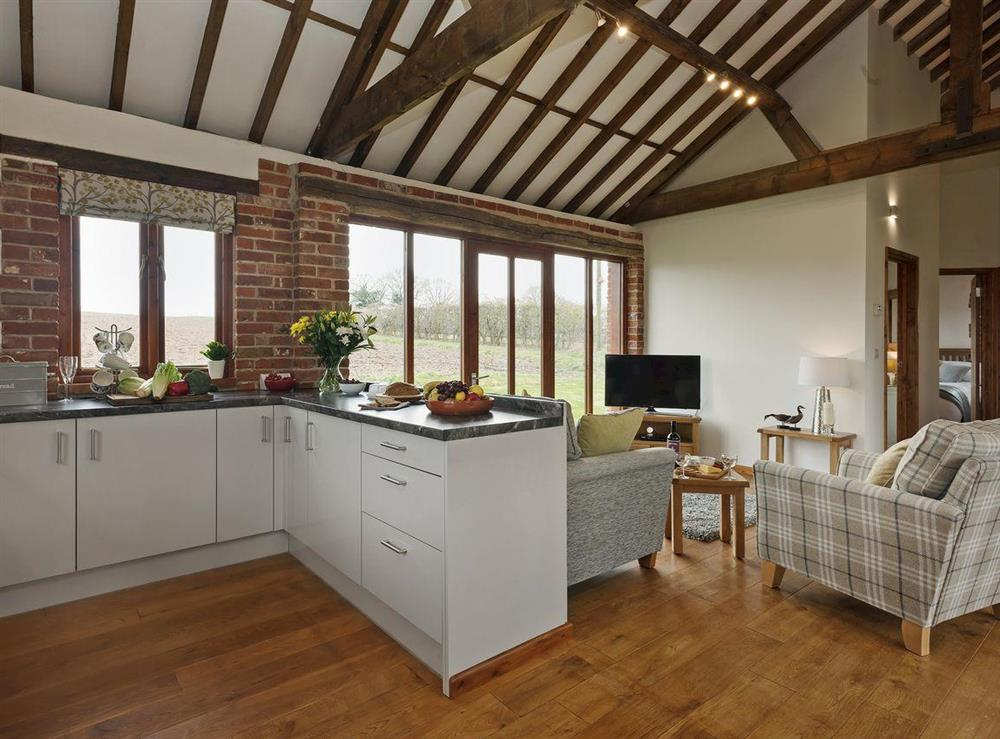 Superbly renovated open plan living space at Elmtree Barn in Skeyton, near North Walsham, Norfolk