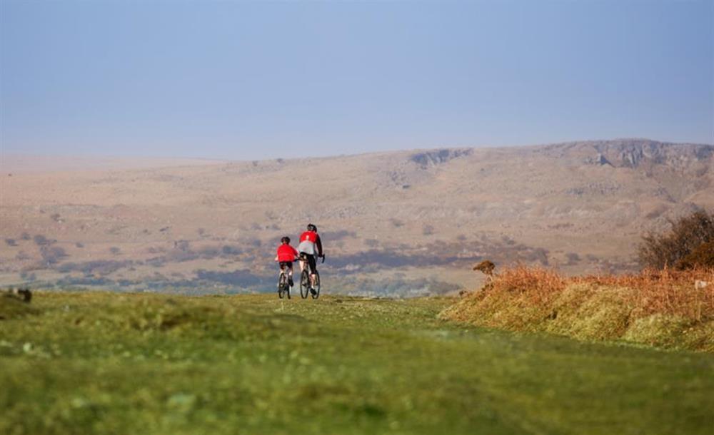 Cycling is a very popular Dartmoor activity at End O Moor, Shaugh Prior