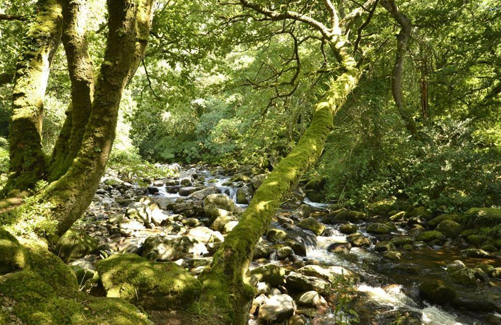 Located in the heart of beautiful Dartmoor at End O Moor, Shaugh Prior
