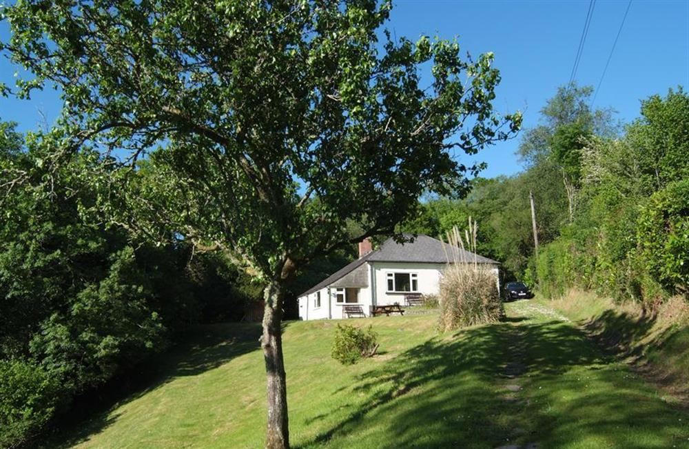 The cottage nestled amongst the trees at End O Moor, Shaugh Prior