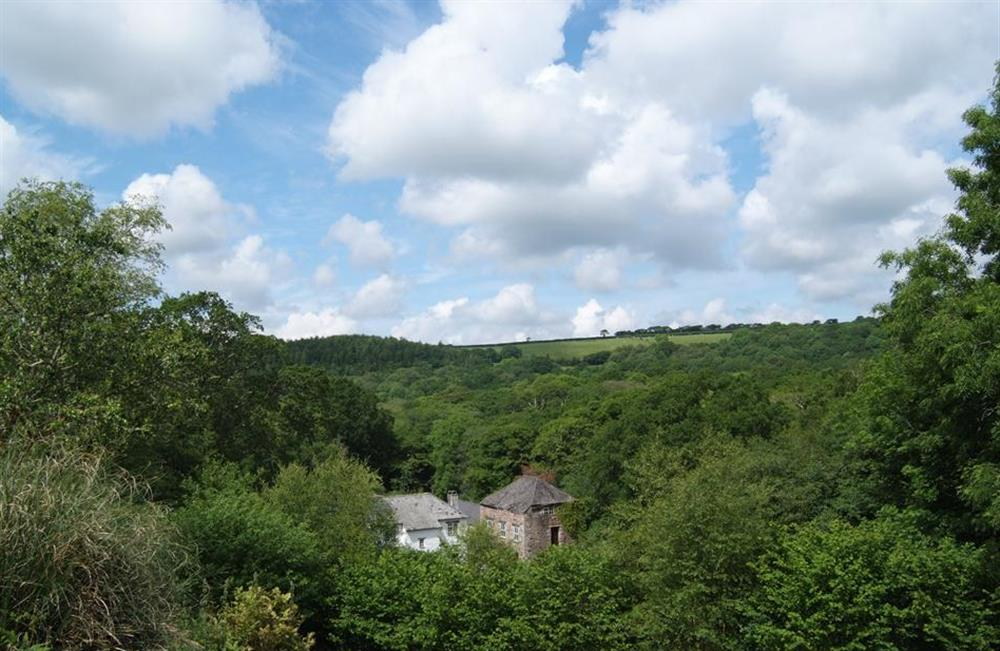 The Old Mill seen from the garden at End O Moor, Shaugh Prior