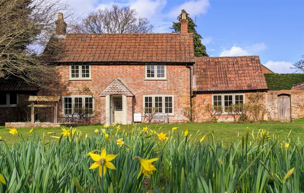 Evergreen, originally a farm cottage built in 1860, is within the free-roaming part of the New Forest National Park