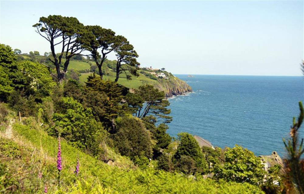 Stunning views from this clifftop village. at Fairholm, Stoke Fleming