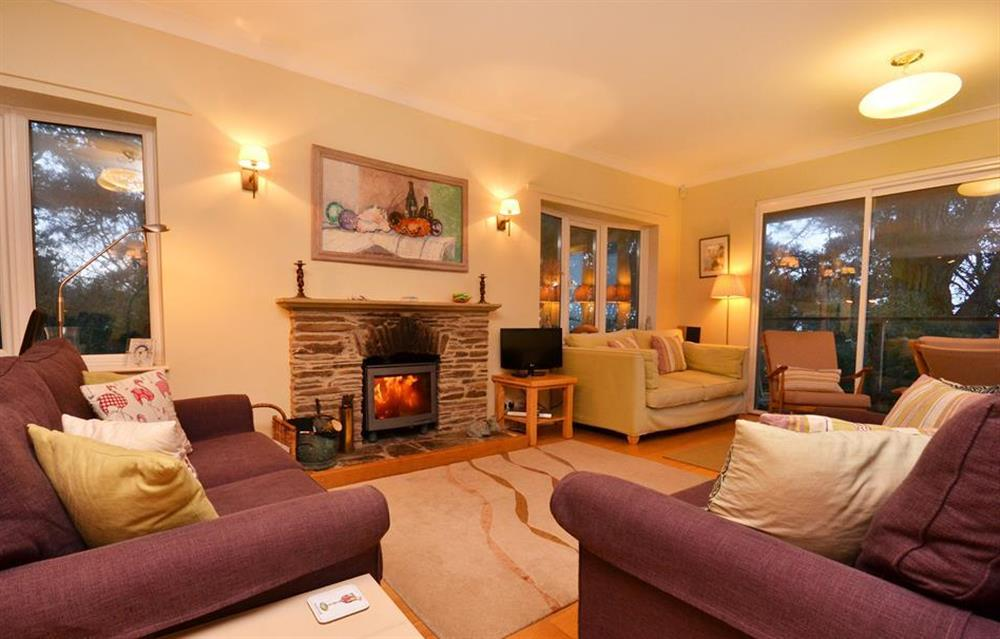 The cosy wood burner stove at Fairyfield, Stoke Fleming