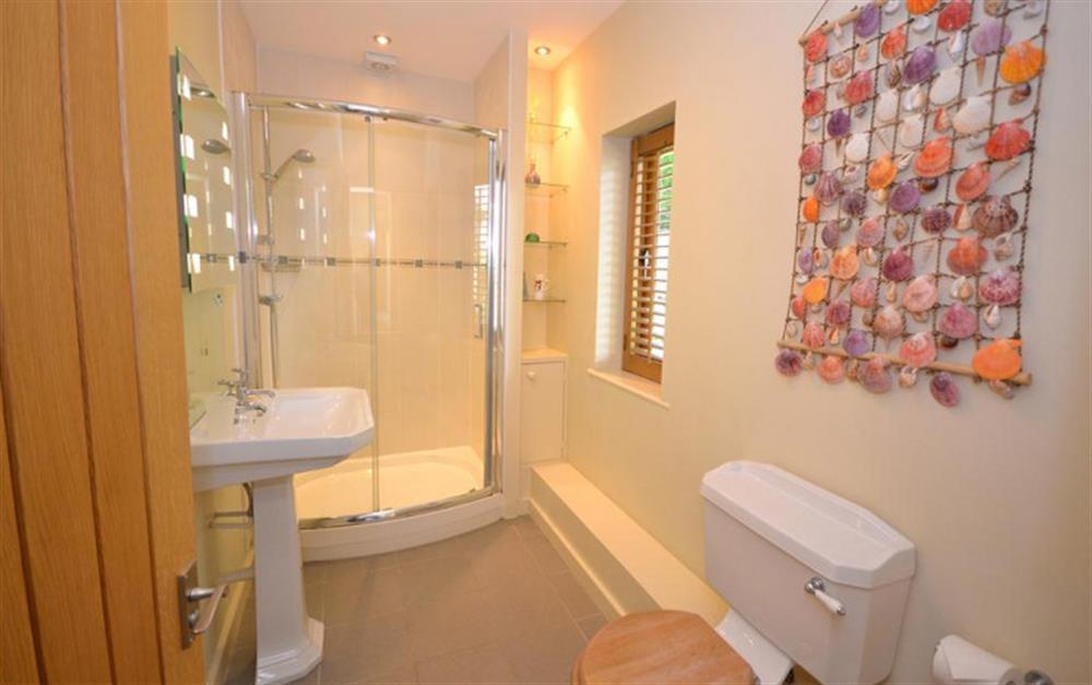 The master en suite shower room at Fairyfield, Stoke Fleming