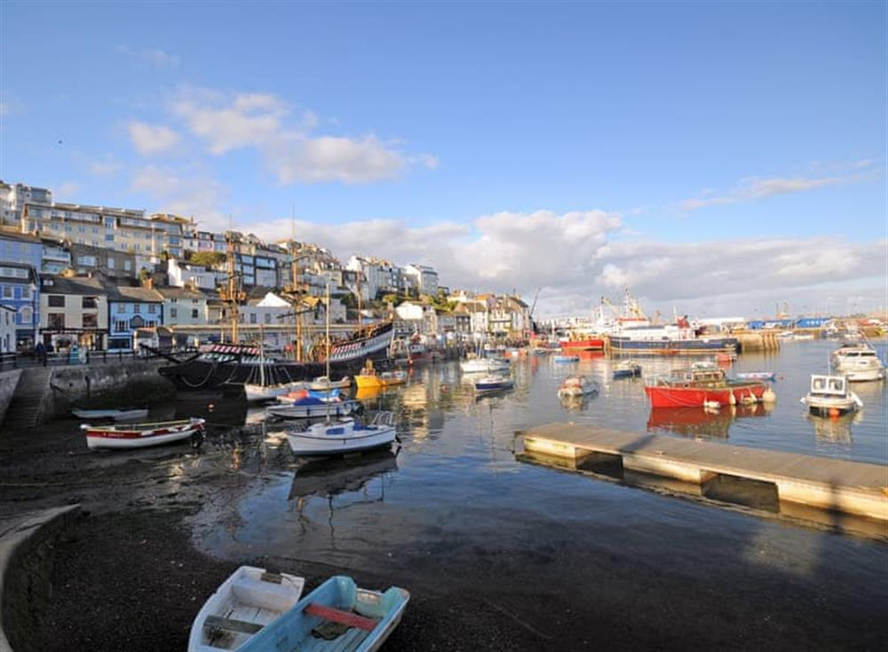 Surrounding area at Farthing Cottage in Brixham, South Devon