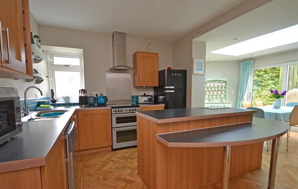 The modern kitchen at Ferndale, Dartmouth