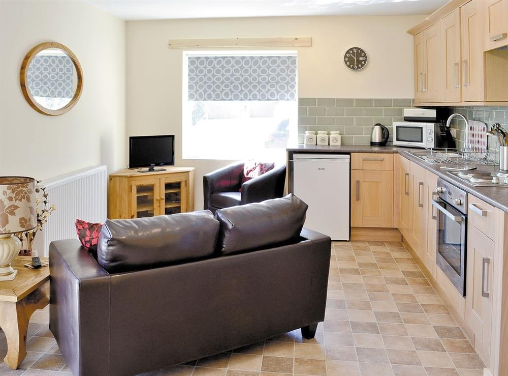 Open plan living/dining room/kitchen at Fishermans Retreat in Old Leake, near Boston, Lincolnshire
