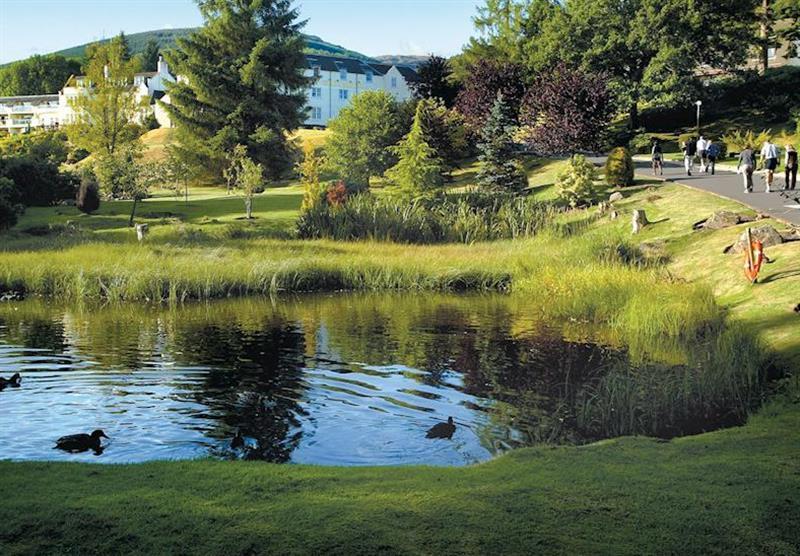 Photo 4 at Forest Hills Lochside Resort in Stirling, Scotland