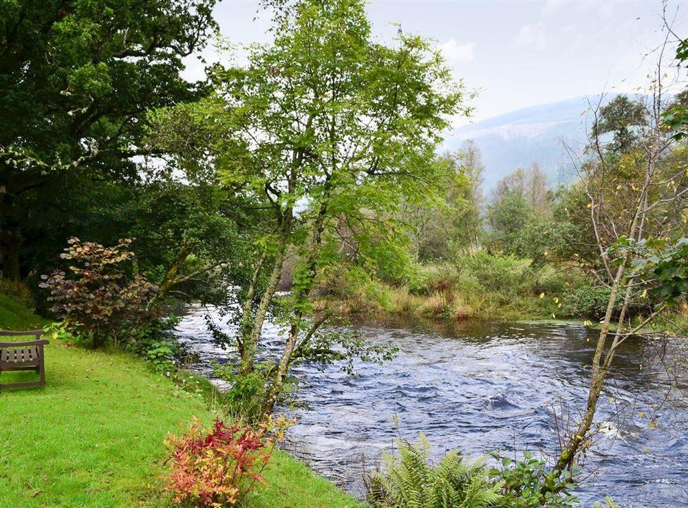 Surrounding area at Forest View in Strathyre, near Callendar, Perthshire