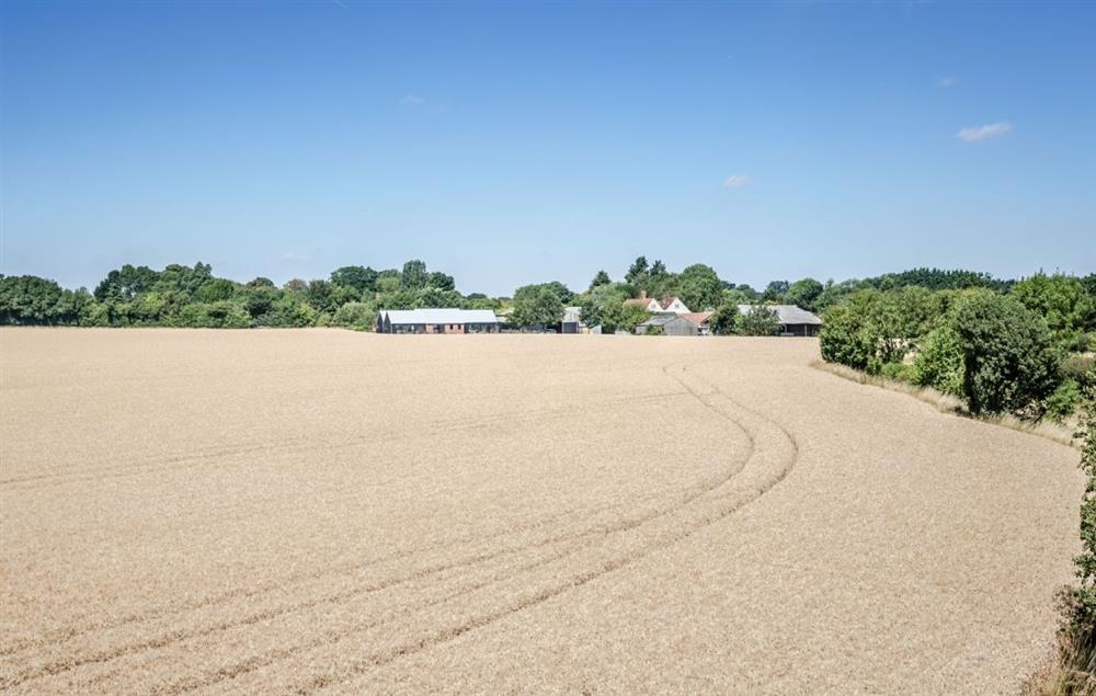 Views from Fox Hatch
