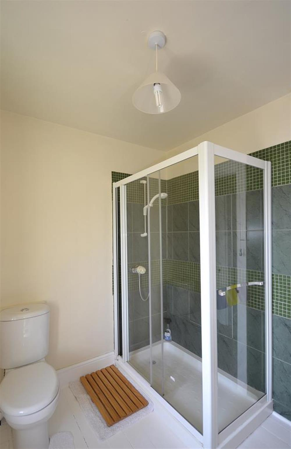 The family shower room, at Foxenhole Farmhouse, Dittisham
