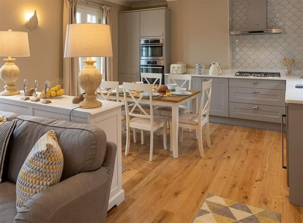 Open plan living space at Frebus House in Dartmouth, Devon